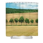Train With A View Shower Curtain