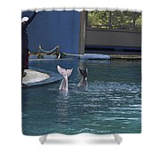Trainer And The Tails Of A Duo Of Dolphins At The Underwater World Shower Curtain