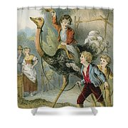 Training The Ostrich Shower Curtain
