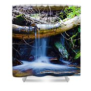 Tranquil Falls Shower Curtain