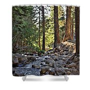 Tranquil Forest Shower Curtain
