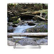 Tranquil Moments Shower Curtain