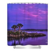 Tranquil Palms Shower Curtain