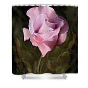 Tranquil Rose Shower Curtain