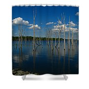 Tranquility II Shower Curtain