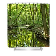 Tranquility In The Forest Shower Curtain by Adam Jewell
