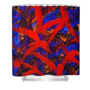 Transitions With Blue And Red  Shower Curtain