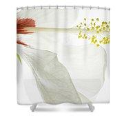 Transparent Hibiscus Shower Curtain