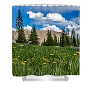 Trappers Lake Meadow Shower Curtain