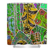 Travel Shopping Colorful Tapestry 8 India Rajasthan Shower Curtain