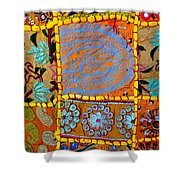 Travel Shopping Colorful Tapestry 9 India Rajasthan Shower Curtain