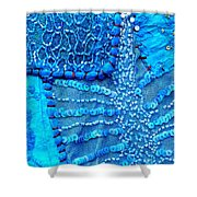 Travel Shopping Colorful Tapestry Series 13 India Rajasthan Shower Curtain