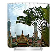 Traveler's Palm At Grand Palace Of Thailand In Bangkok Shower Curtain