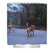 Traveling Twins Shower Curtain