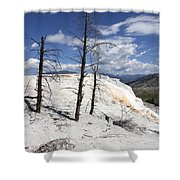 Travertine Terrace And Dead Trees Shower Curtain
