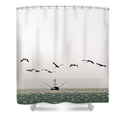 Trawler And Pelicans Shower Curtain