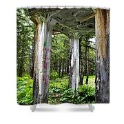Treadwell Mine Building Shower Curtain