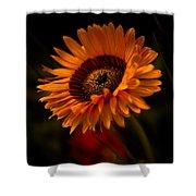 Treasure Flower Shower Curtain