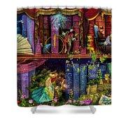 Fairytake Treasure Hunt Book Shelf Variant 4 Shower Curtain