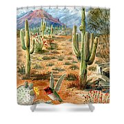 Treasures Of The Desert Shower Curtain