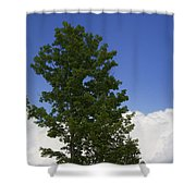 Tree Against A Cloudy Blue Sky In Vermont Shower Curtain