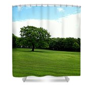 Tree Amidst Freshly Mowed Grass Shower Curtain