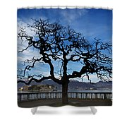 Tree And Borromee Islands Shower Curtain