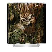 Tree And Buck Shower Curtain