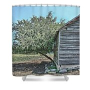 Tree And Building Shower Curtain