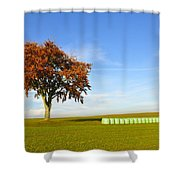 Tree And Hay Bales Shower Curtain