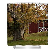 Tree And Red Barn Shower Curtain