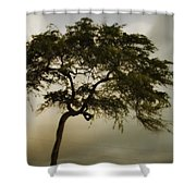 Tree And Stormy Sky Shower Curtain