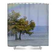 Tree And The Rainbow Shower Curtain