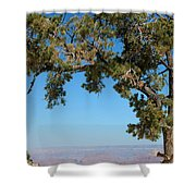 Tree Arch Shower Curtain