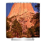 Tree At Devils Tower Shower Curtain