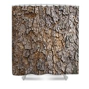 Tree Bark Background Texture Shower Curtain