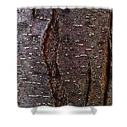 Tree Bark To The Left Shower Curtain