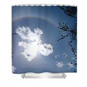 Tree Bow Shower Curtain
