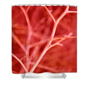Tree Branches Abstract Red Shower Curtain