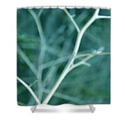 Tree Branches Abstract Teal Shower Curtain