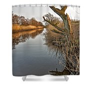 Tree By The River Shower Curtain