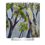 Tree Canopy Shower Curtain