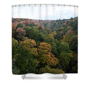 Tree Color Shower Curtain