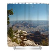 Tree Edge Shower Curtain
