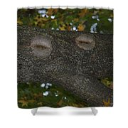 Tree Face 1 Shower Curtain
