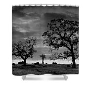 Tree Family In Black And White Shower Curtain