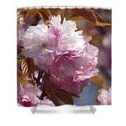 Tree Flower 01 Shower Curtain