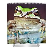 Tree Frog Shower Curtain by Jean Noren