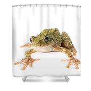 Tree Frog Ready To Jump Shower Curtain