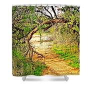 Tree Gate Shower Curtain
